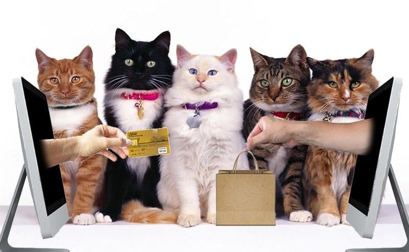 Miglior negozio per animali online dove fare shopping