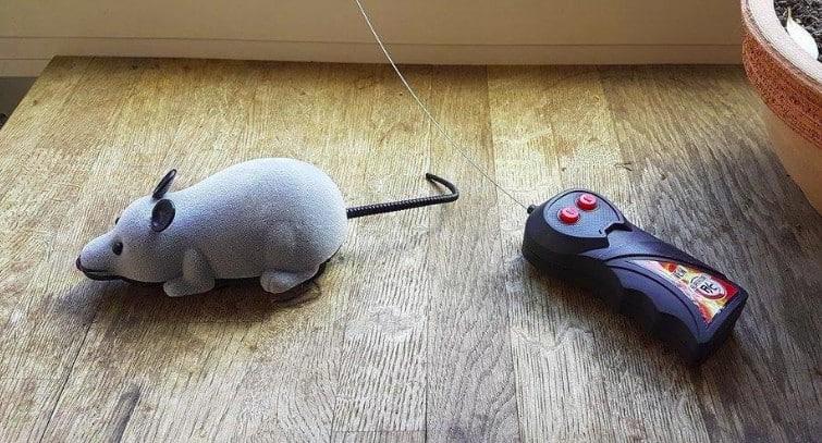 Topo radiocomandato per gatti