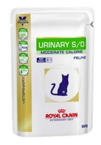 Urinary Royal Canin gatto Umido