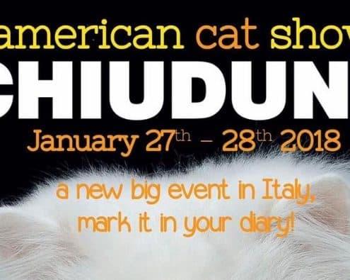 american cat show Chiuduno