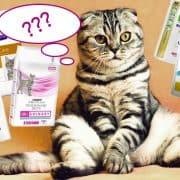 cibo urinary gatto marche consigli crocchette umido