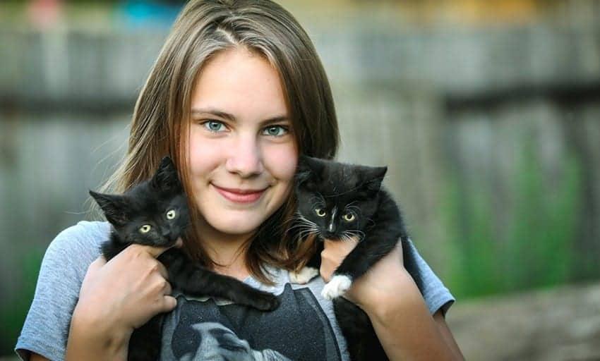 coccolare un gatto