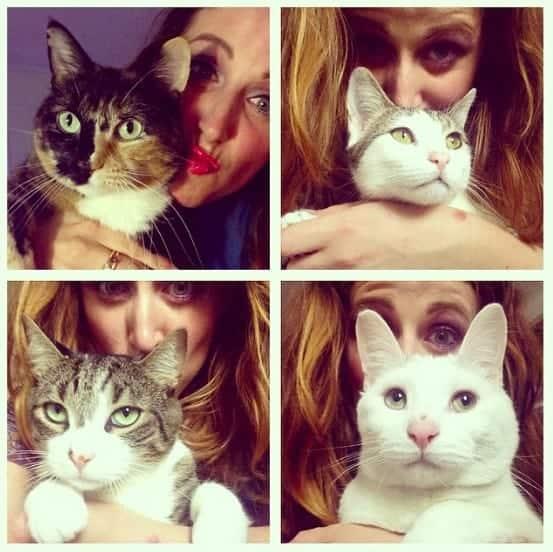 i gatti di clio make up