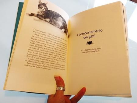 il libro dei gatti in collaborazione con miciogatto