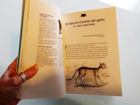 interno il libro dei gatti Jehanne Jean-Charles