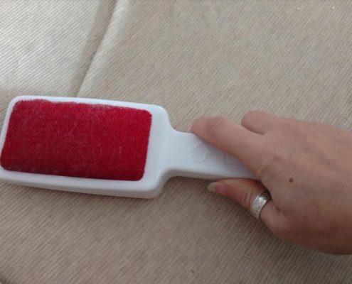 Le migliori spazzole toglipeli per la nostra casa
