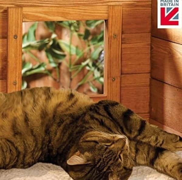 cuccia per gatti da esterno