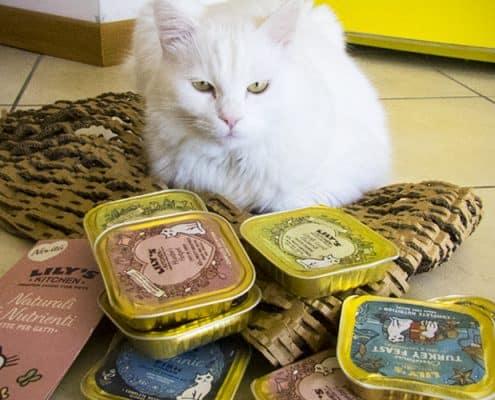 Lily s kitchen gatto recensione