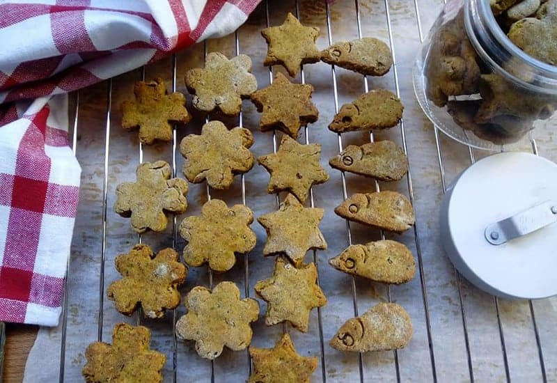 biscotti per gatti ricetta fai da te manzo
