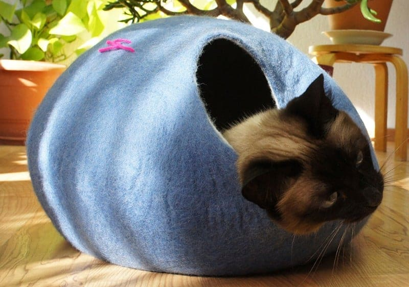 cat cave gatto etsy