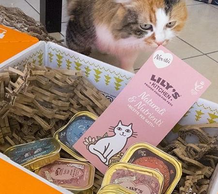 cibo per gatti lily s kitchen