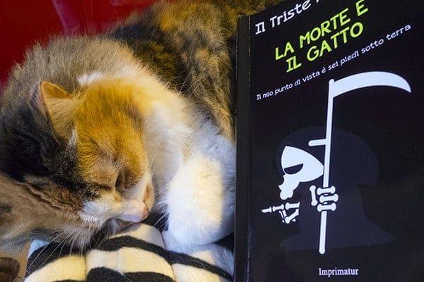 la morte e il gatto