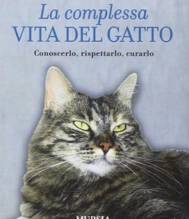 la complessa vita del gatto raffaella rizza