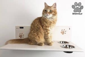 arredamento per gatti ciotole sospese