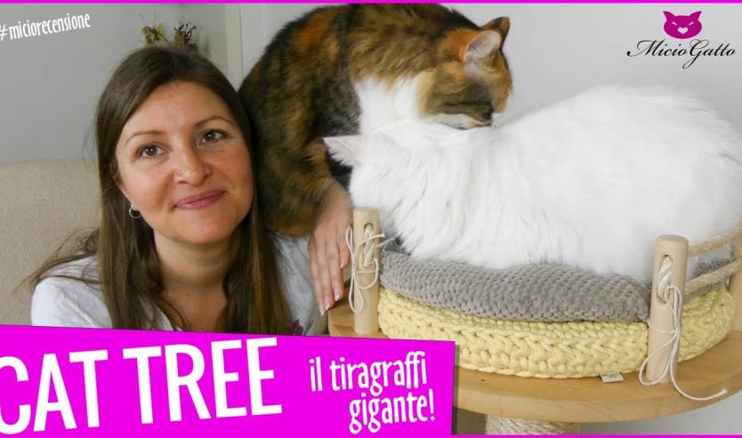 cat tree tiragraffi per gatti gigante recensione