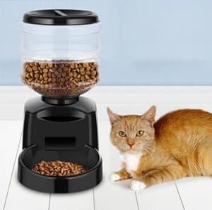 distributore automatico crocchette per gatti