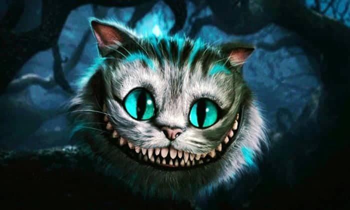 stregatto di alice