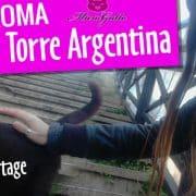 gatti di roma colonia felina torre argentina reportage
