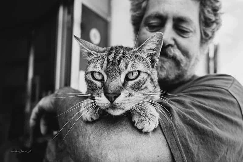 George e Berto uomini e gatti