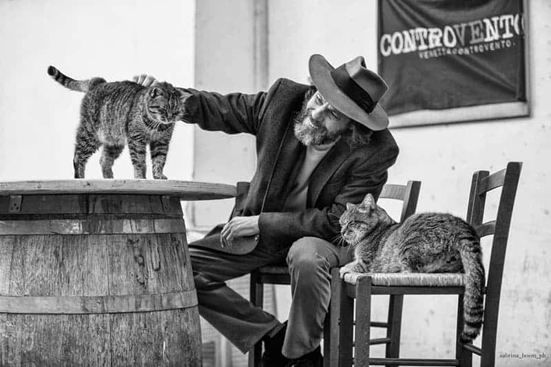 gattari di uomini e gatti sabrina boem
