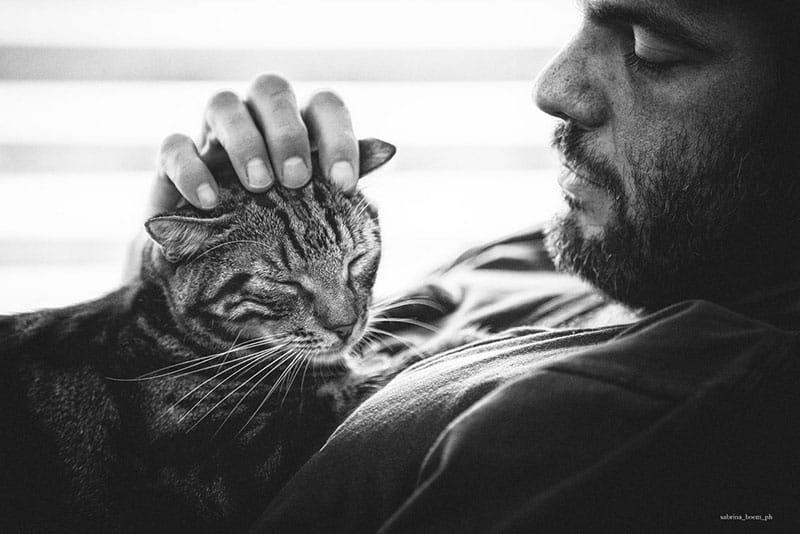 gattari sabrina boem uomini e gatti