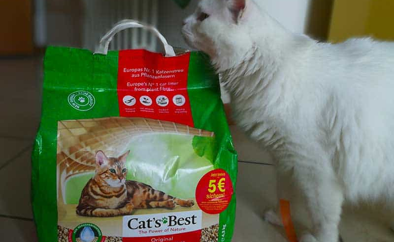 lettiera cats best eco plus opinioni
