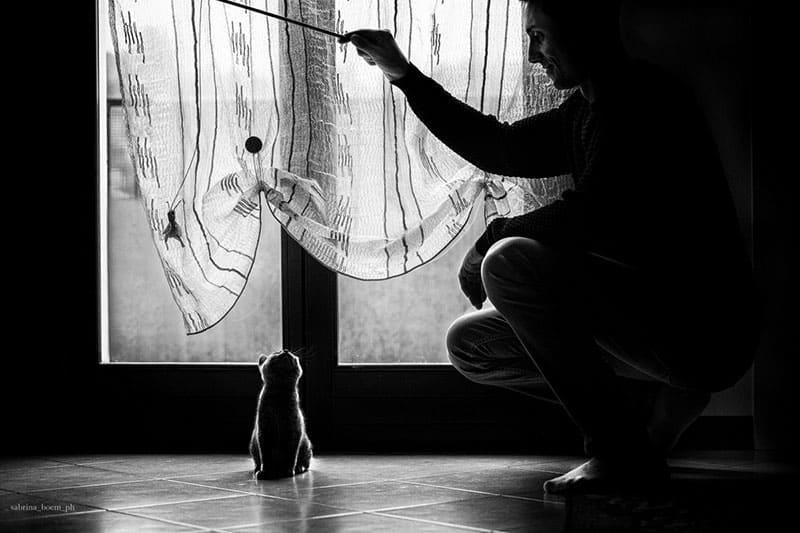 storie di uomini e gatti gattari sabbrina boem