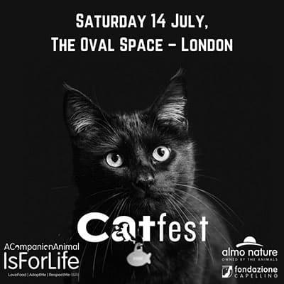 Catfest_londra 2018