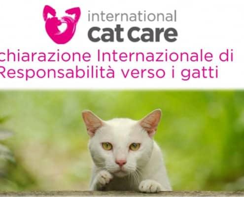 dichiarazione internazionale di responsabilita verso i gatti