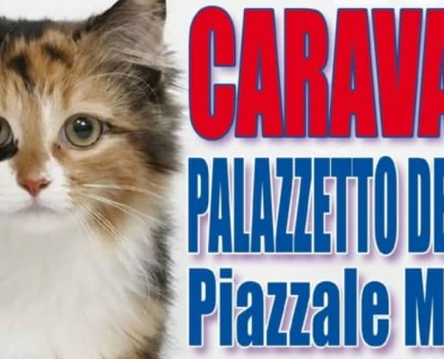 expo felina caravaggio 2018