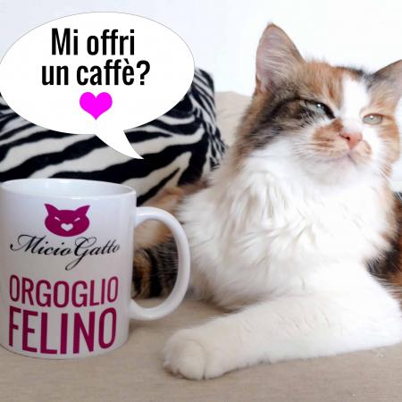 lady-mi offri un caffe