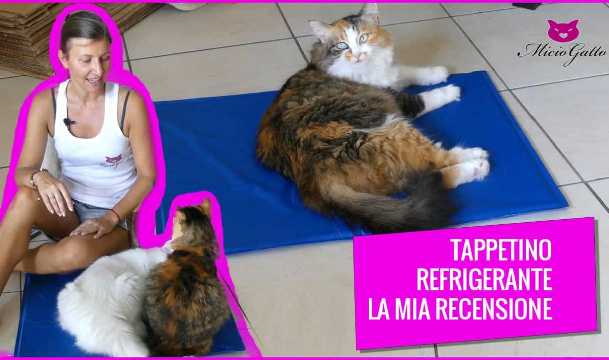 tappetino refrigerante gatti recensione come funziona - fb