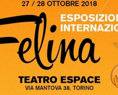 Esposizione Internazionale Felina Torino 2018 FIAF
