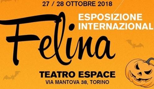 Esposizione Internazionale Felina di Torino 2018