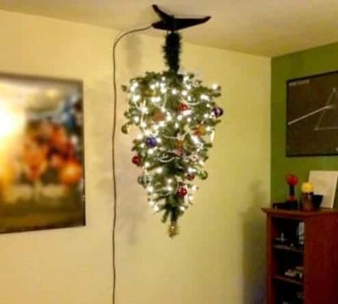 albero di natale e gatti