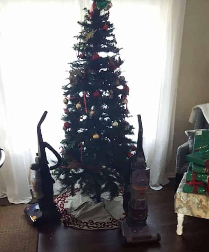 albero natale a prova di gatto