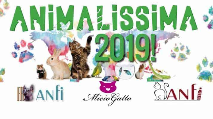 animalissima pisa 2019
