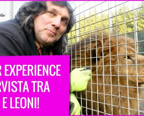 tiger experience intervista gianni mattiolo con occhi di tigre recensione libro
