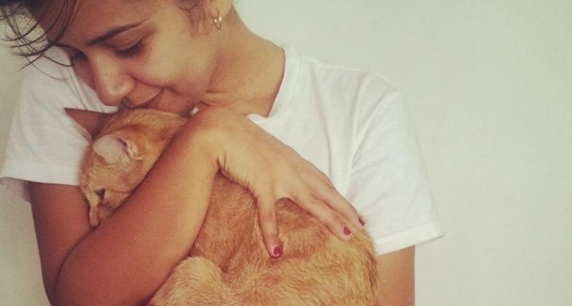 Come i gatti dimostrano affetto ti scelgono e come ricambiarli