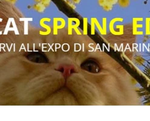 TitaniCat Spring Ed. Expo Felina San Marino 2019