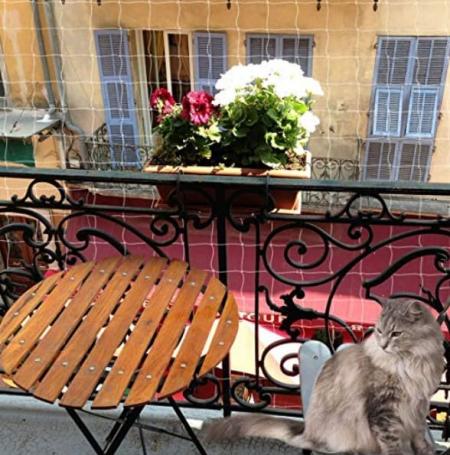protezioni balconi per gatti