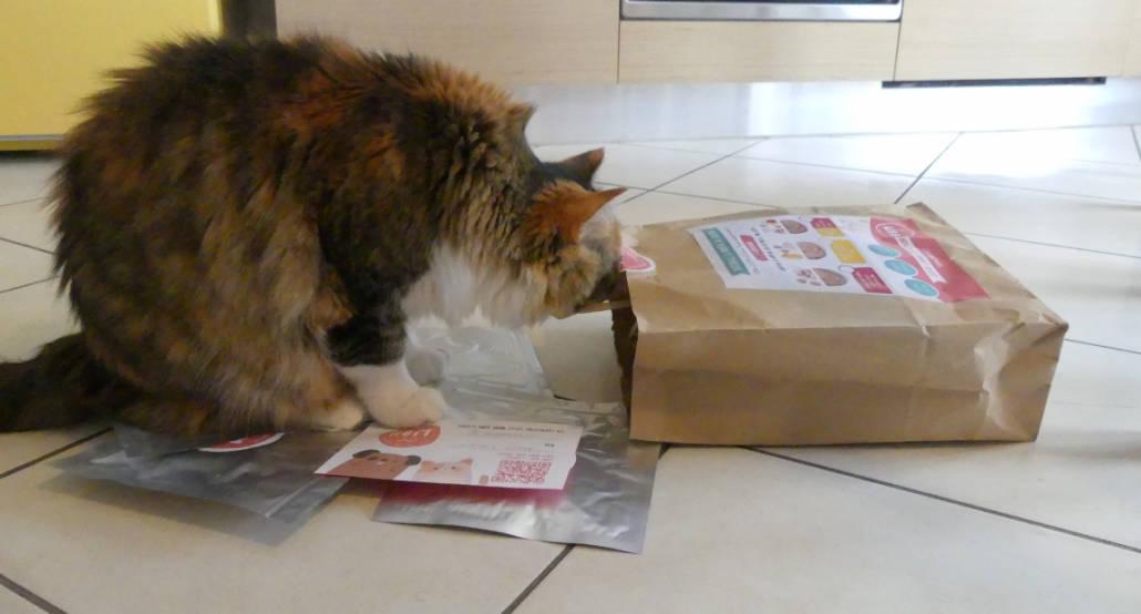 HOM cibo fresco per gatti
