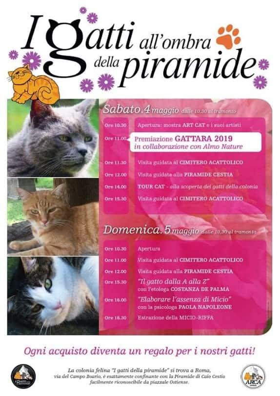 programma mercatino gatti della piramide 2019