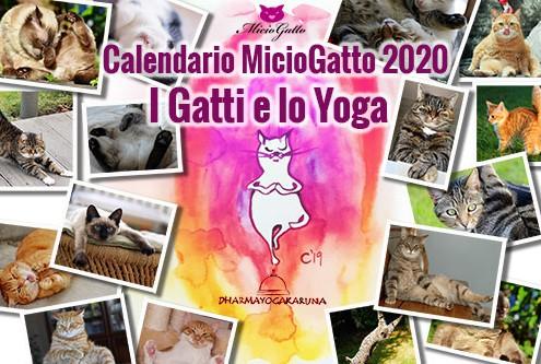 calendario miciogatto 2020 dharmayogakaruna-piccolo