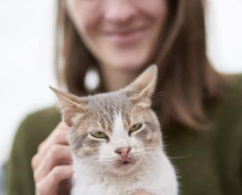 Assicurazione animali domestici come assicurare cane e gatto