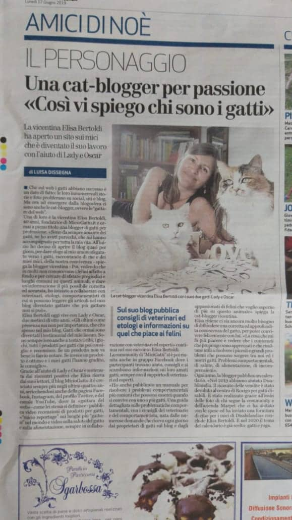 MicioGatto sul Giornale di Vicenza
