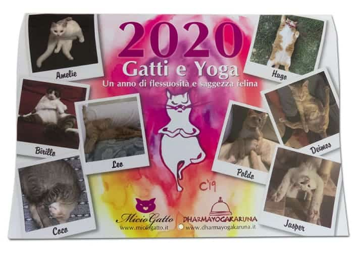 Calendario MicioGatto 2020