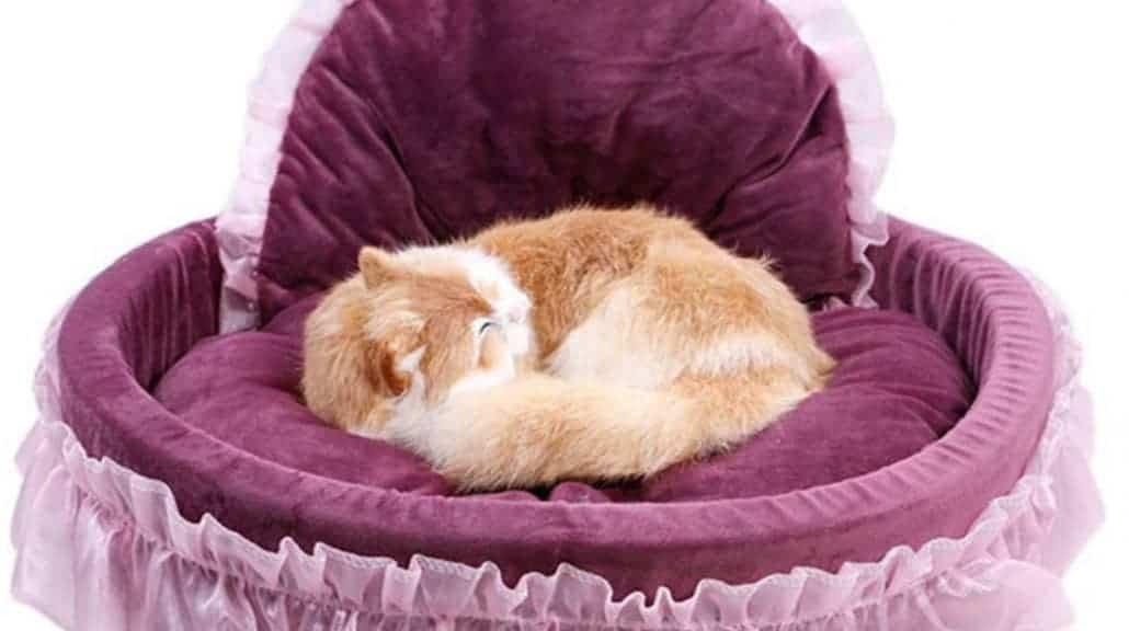 Cuscino per Cani per Gatti Lettino per Gatti Adatto per Cuscino per Cani di Grandi Dimensioni