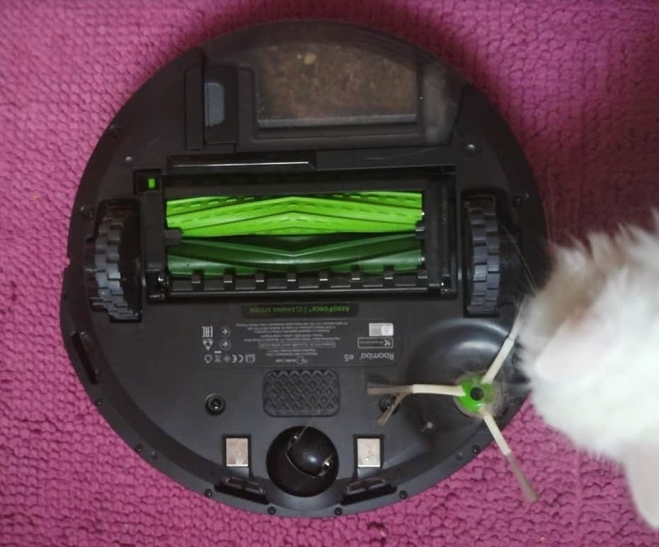 roomba per animali