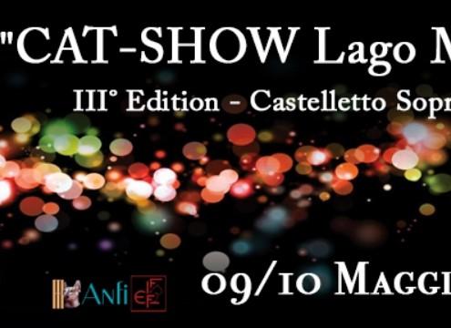 cat show lago maggiore 2020